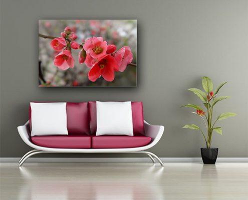 הדפסה על קנבס פרחים